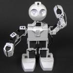JD Humanoid_1